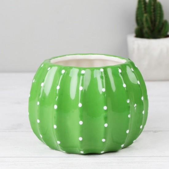 Sass & Belle - Pot cactus