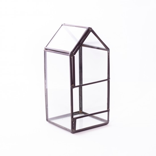 Plantophile - Plante avec maison en verre