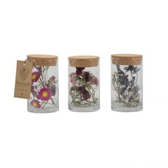 Plantophile - Tube moyen de fleurs séchées et plumes