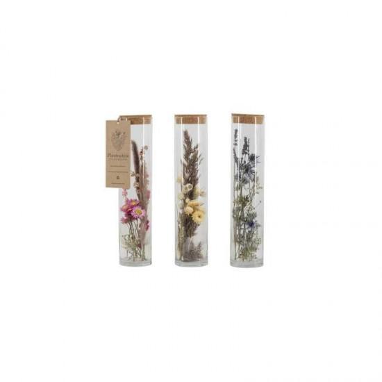 Plantophile - Grand tube de fleurs séchées et plumes
