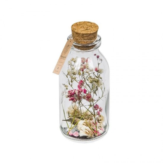 Plantophile - Petite bouteille fleurs séchées