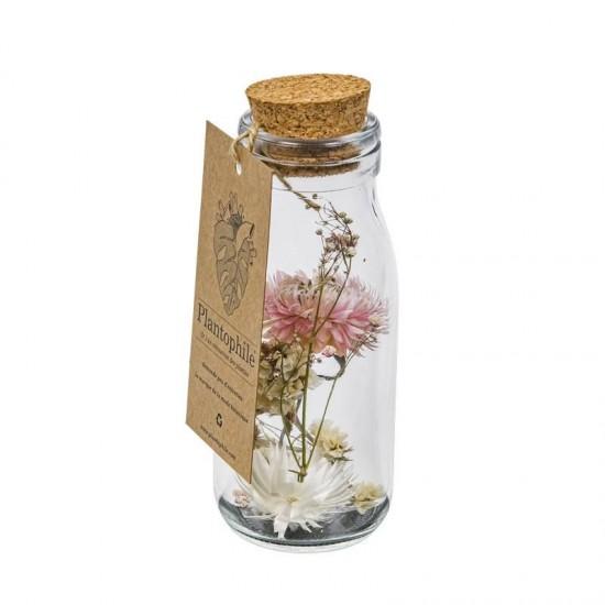 Plantophile - Grande bouteille fleurs séchées