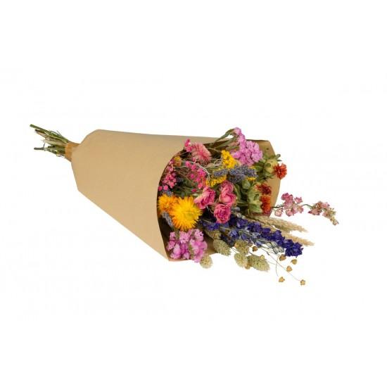Plantophile - Grand bouquet de fleurs séchées