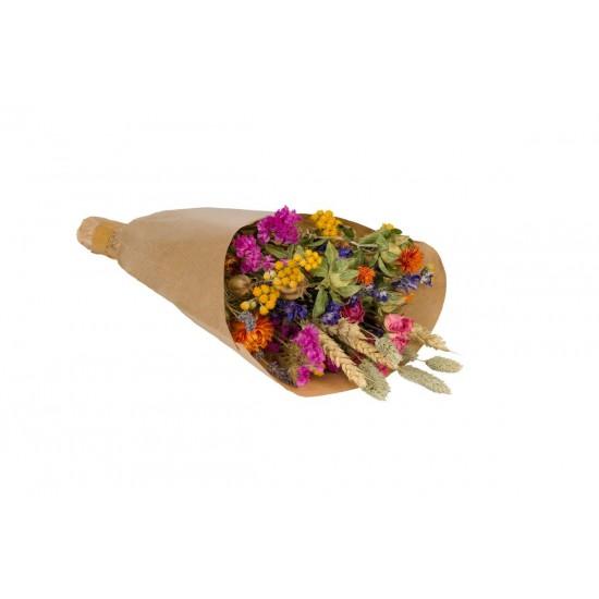 Plantophile - Petit bouquet de fleurs séchées