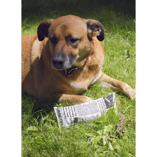 Kikkerland - Jouet chien journal