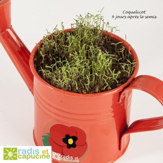 Radis et Capucine - Mini arrosoir rouge avec graine de coquelicot
