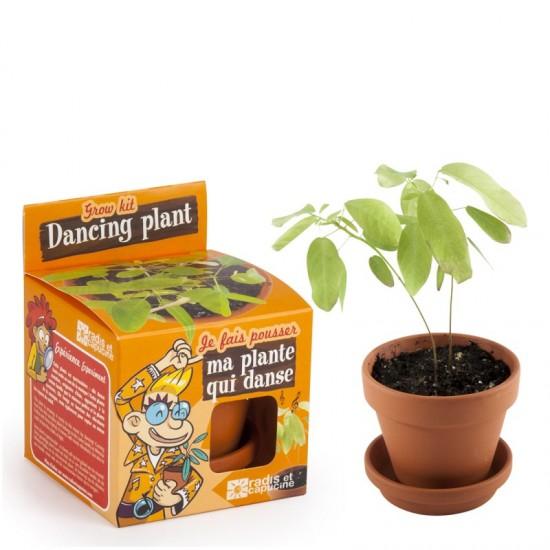 Radis et Capucine - Je fais pousser ma plante qui danse