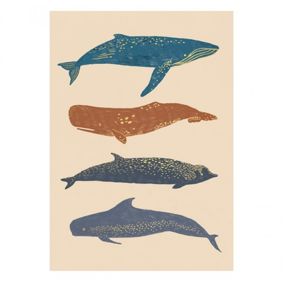 Timi - Carte de voeux baleine