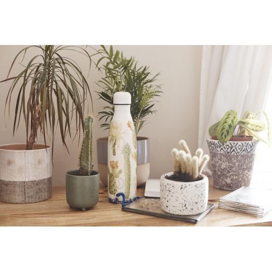 Chilly's Bottles - Bouteille réutilisable cactus botanique 500mL