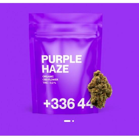 TealerLab - Purple Haze CBD