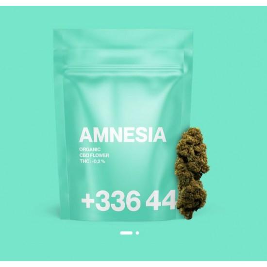 TealerLab - Amnesia CBD