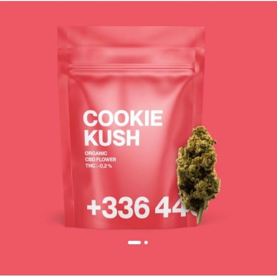 TealerLab - Cookie Kush CBD