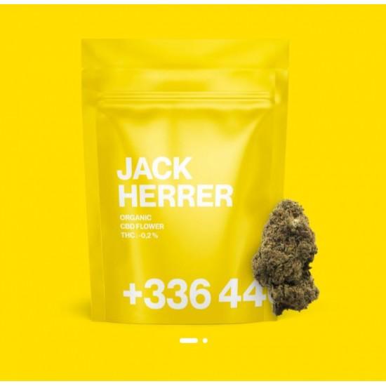 TealerLab - Jack Herrer CBD