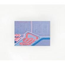 LUNI APE - Carte postale La Ponétie